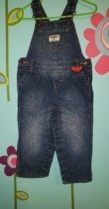 Baby Girl Insolated Denim Overalls